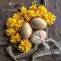 tojás, hűsvét