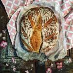 A kenyér dicsérete